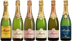 Mauler Probierpaket 6 Flaschen