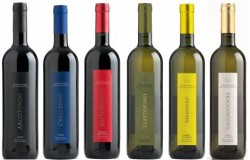 Probierpaket aus dem Tessin - Tenuta San Giorgio